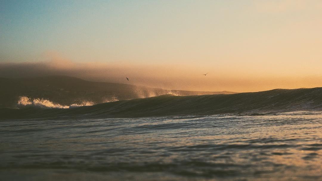 Ser del mar