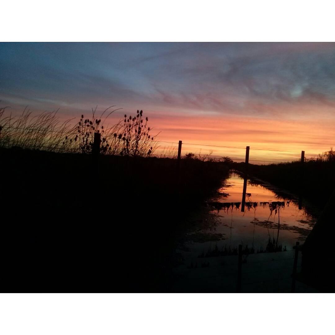Enamoradísima de esto. #tramonto #sunset #atardecer #inlove #EntreRios #Gualeguaychú #horamagica