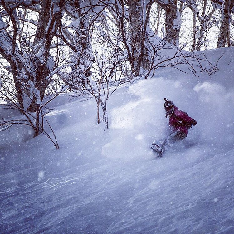 Eat Sleep Ride Pow. #A7Renegade @kyehalpin deep in the pow cycle here in Japan. #avalon7 #followthestoke #liveactivated #snowboarding #moiwa #japow www.avalon7.co