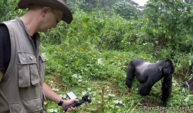 #OSMO in the mist.  #DJI and Rare Species Fund saving mountain gorillas.  http://bit.ly/OSMOSInTheMist #WhatsNext #IamDJI
