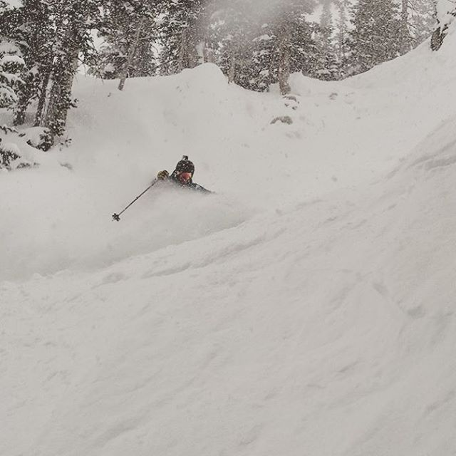 Flylow's @benwhiteskis getting pitted here in Utah.  So glad to see it turn on there now too! @snowbird  #embracethestorm | #flylowgear