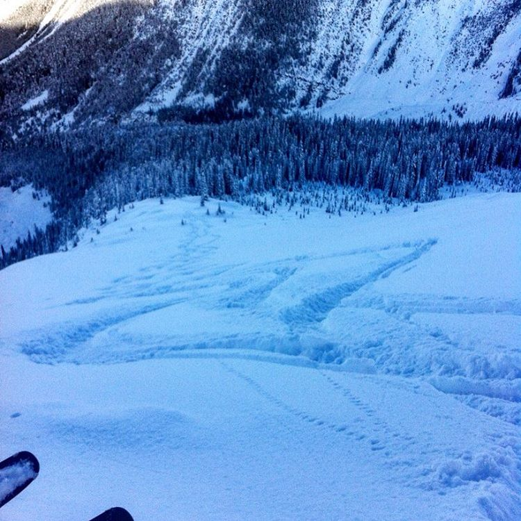 Sheltered north slopes of Rogers pass offered up some blower turns today. #graceskis #rogerspass #revelstoke #getupgetdown #humanpoweredfun #skiing #bamboo