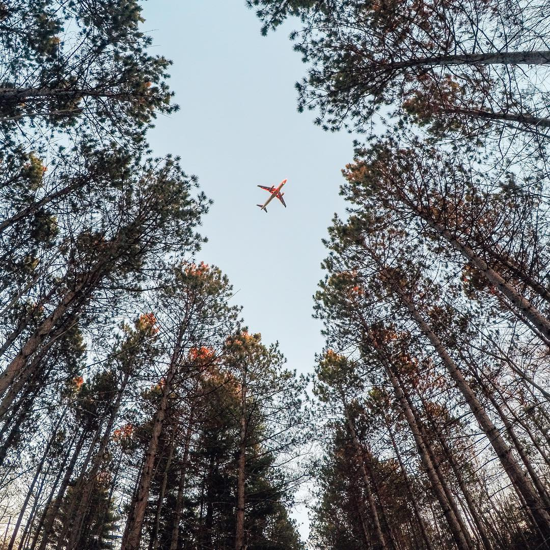 Photo of the Day! @reelcanuck was hiking + shooting in #Ottawa when a ✈️ buzzed the clearing. You never know when a great shot will present itself! Get out and find one, and share with us via #GoProAwards link in our bio. #GoPro