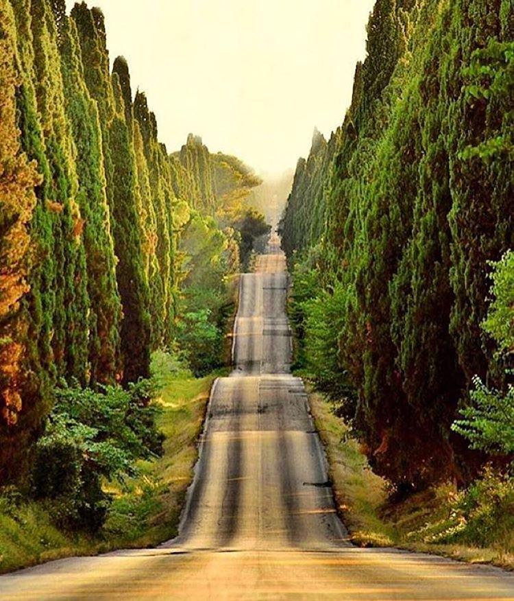 Endless Roads. Tuscany, Italy. Tiziano Pieroni photo.  #endlessroads #longboardgirlscrew #womensupportingwomen #roadporn #tuscany #italy #tizianopieroni