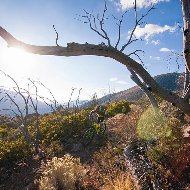 Chasing golden hour with the Groms from Chainline bikes #SixSixOne #ProtectFun Photo - Brock VanHeel #661 #661protection