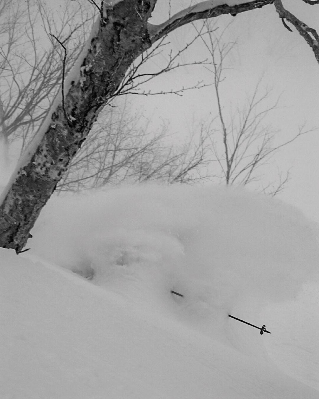 Doug Krause is in there, somewhere. #dpsskis #japow #powder #skiing
