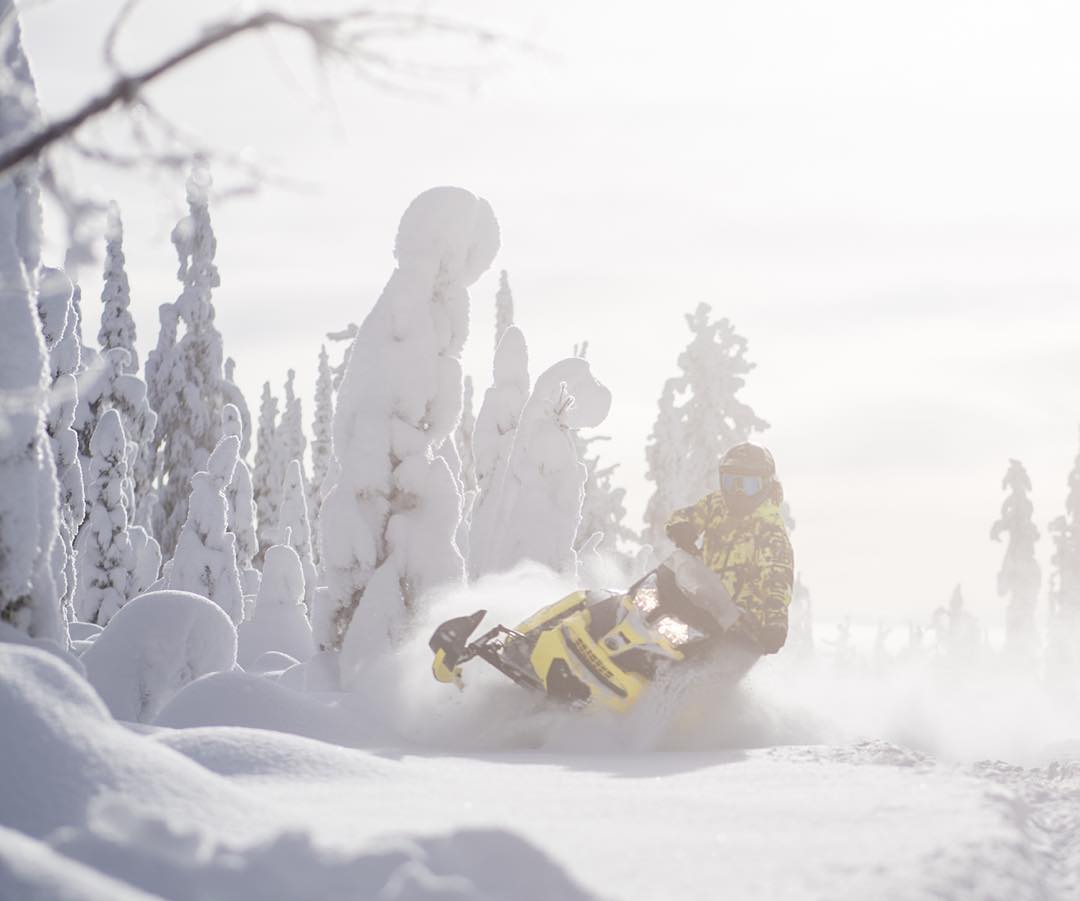 #TBT, just carving through some dreamy Canadian powder-filled trails on my @SkiDooOfficial Summit X sled at @Baldfacelodge last month. It's mind boggling to see how snow they get up in those mountains.