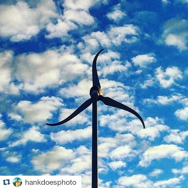 Don't judge me, I'm just a tall poppy.  Repost from @hankdoesphoto  Don't forget to tag #IamDJI to be featured! #WhatsNext