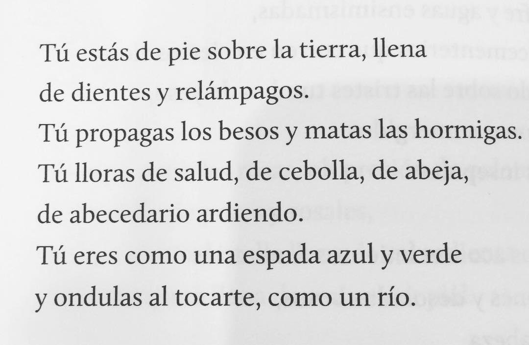 Tu. #apalabrados #pabloneruda