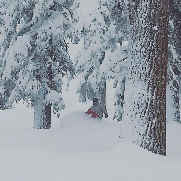 Gettin' some in the WP @skiheavenly Snow is light, soft, and there's plenty of it! #searchingforpow #heaven #skiheavenly #laketahoe #getoutside #graniterocx