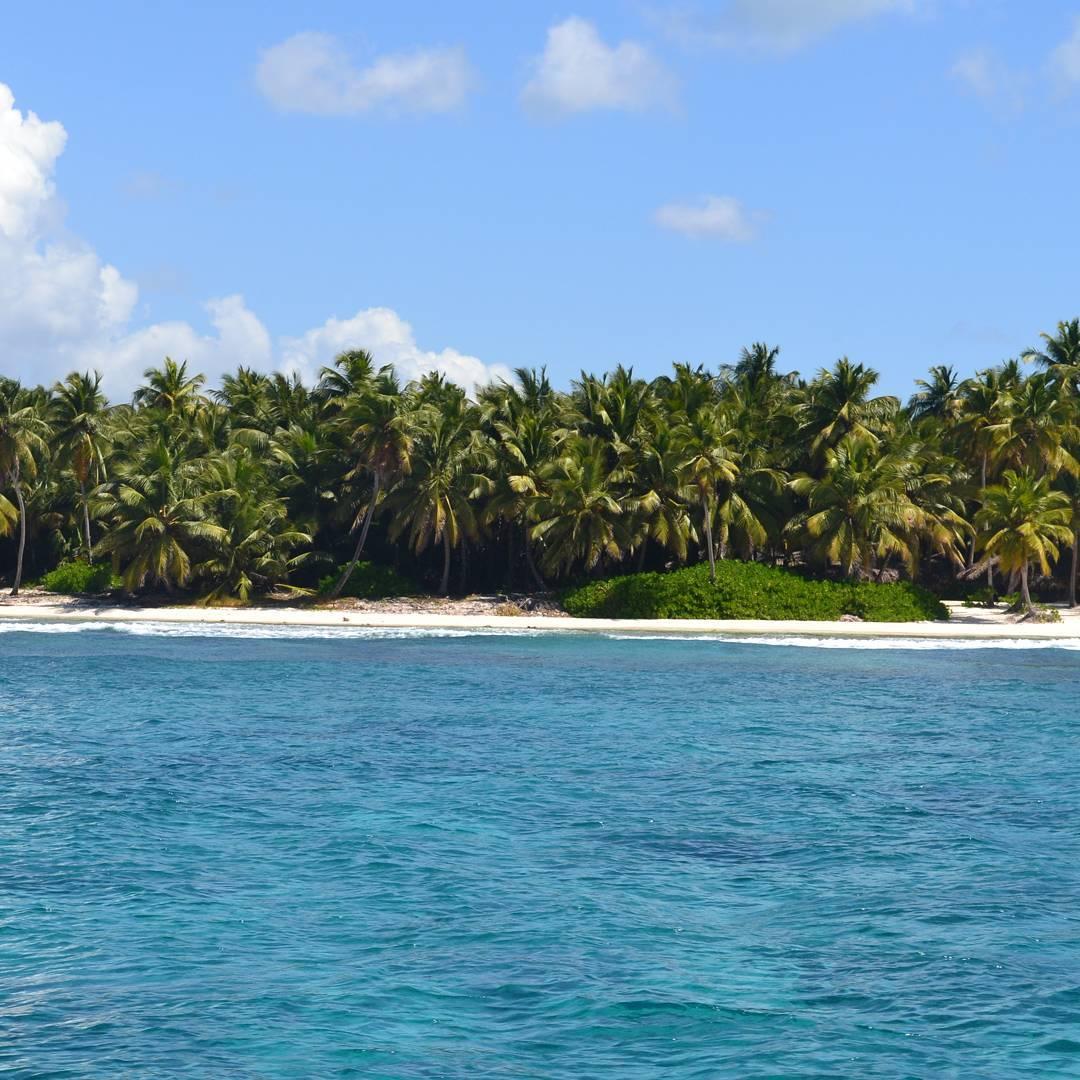 La naturaleza siempre nos enseña a combinar los colores.... igual prefiero el azul solo.  #igworldclub #ig_caribbean_sea #ig_caribbean #ig_republicadominicana #estaes_america #natgeotravel #naturaleza #creacion #marcaribe #paraiso #playa #palmeras...