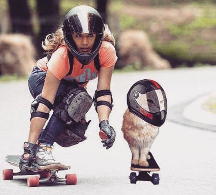 Not without my cat.  @lgcfrance Ambassador @tahina_m sharing a run with Hector, her cat. You know what they say: Couples that skate together, stay together