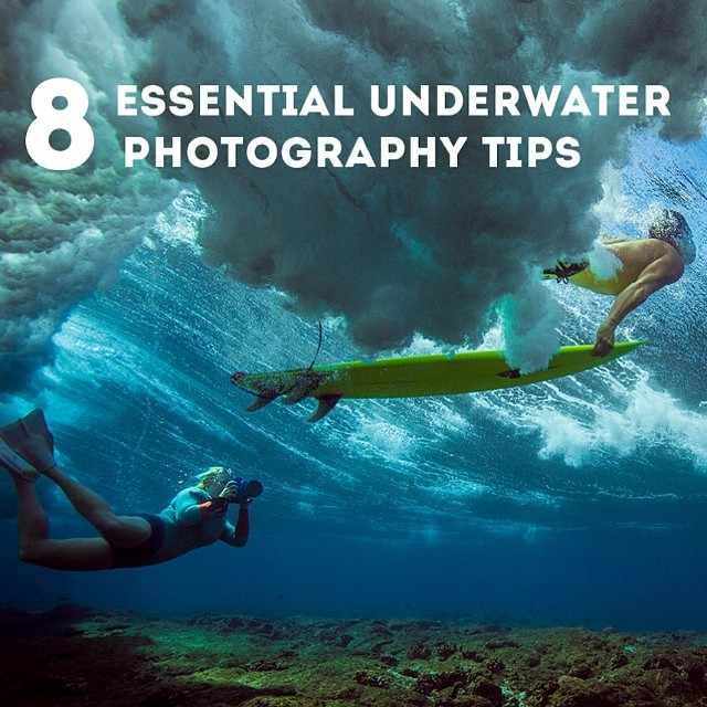 Go to the link on my profile for 8 tips for underwater photography + a look into the gear I use to make it happen. @smugmug @realoutex (bts photo by @marktipple)