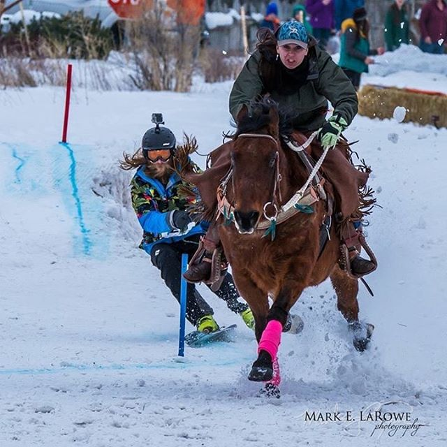 @camsquatch doing some skijoring in Driggs last week. #kittenfactory #itsahorse