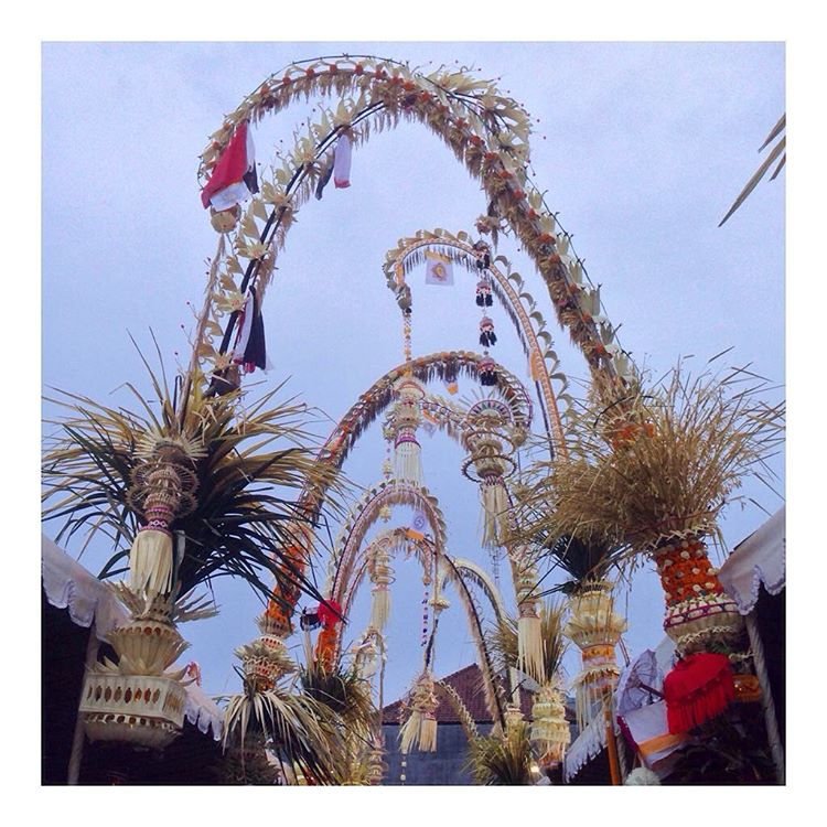 "Today is the Balinese Kuningan celebration & the streets look so festive lined with these ""penjor"" decorations! It's amazing what people create here using almost all natural materials."