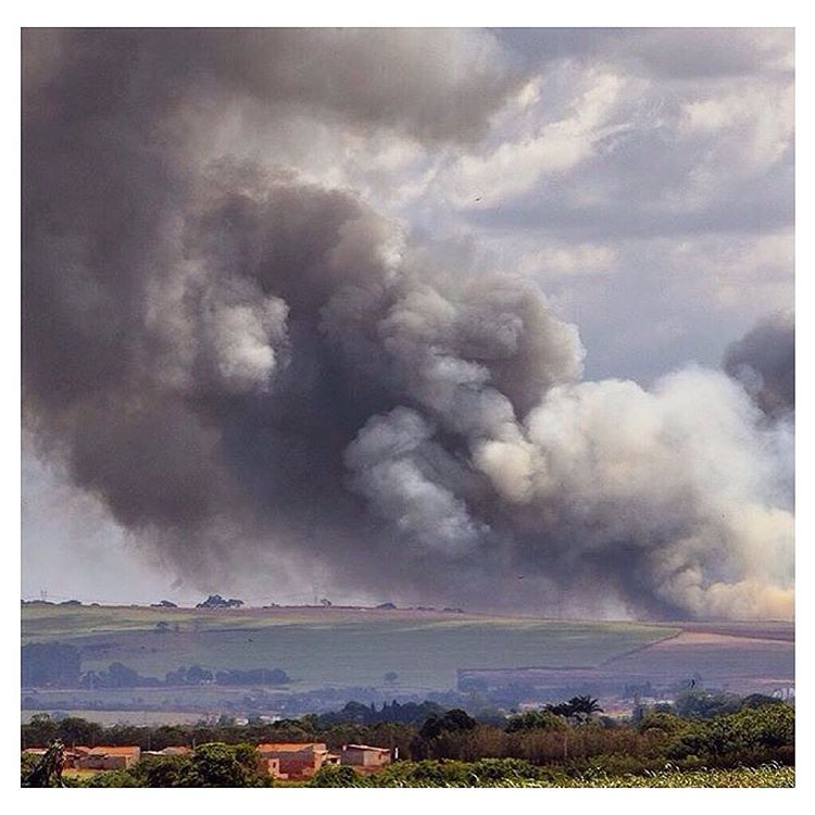 How's your air quality? This image on @natgeo of a controlled burn in a sugarcane field in Ribeirao Preto might make you stop to think about it. This practice is a primary source of harmful emissions, and although Brazil might seem a world away, let's...
