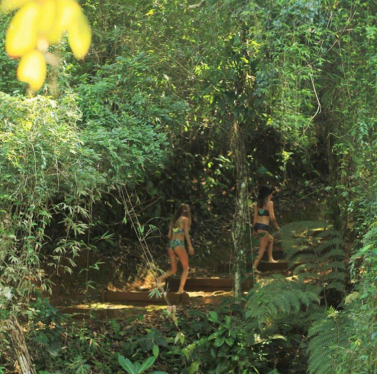 Deep jungle walk #katwai #swimwear #bikini #travel #explore