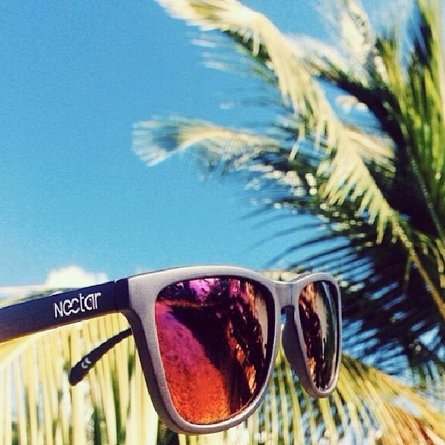 The Epic || #nectarshades #thesweetlife
