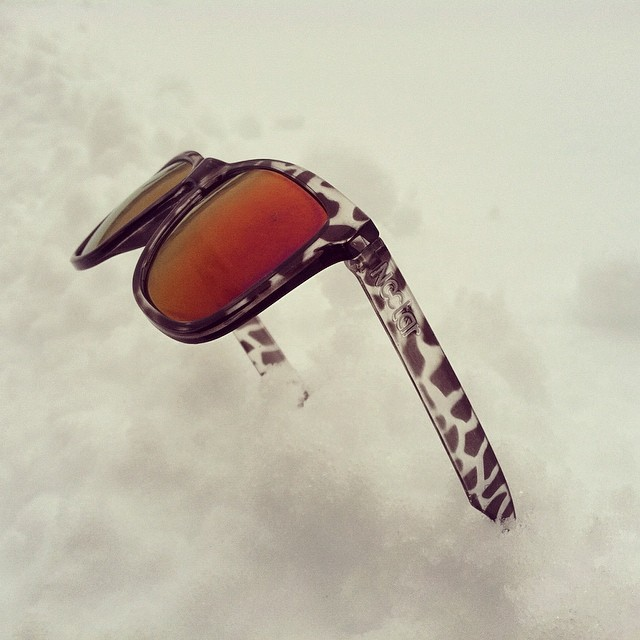 The season is never over || The Shred #thesweetlife #doepicshit #snow