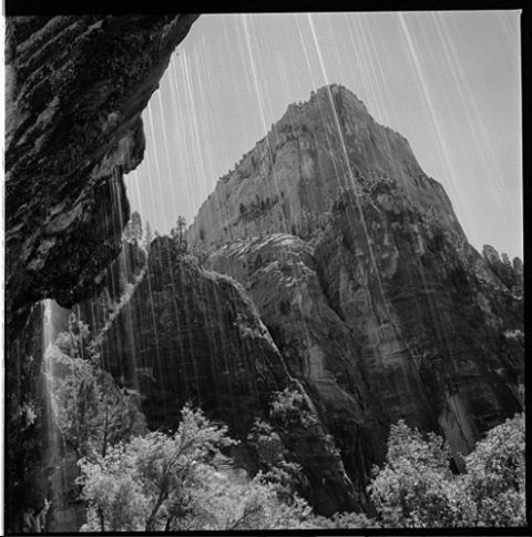 INTERVIEW W/ DANIEL TOROK up on the field notes blog, get to know @dtorokphoto and soak in his craft ~ featured snap of @zionnps #radparks #parkchamps #parkphotography #shootfilmnotmegapixels