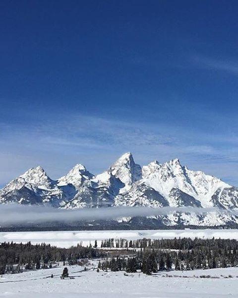 G R A N D  T E E E E T O N S ! !  @thaliancgonzalez shared a magnificent  #radparks #photo @grandtetonnps #wintersun #bluebirdday