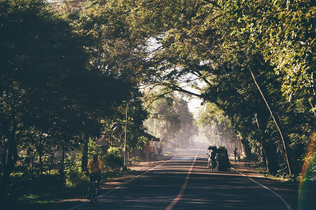 When the trees frame the highway, you know it'll be a good day #ThePhilippinesProject