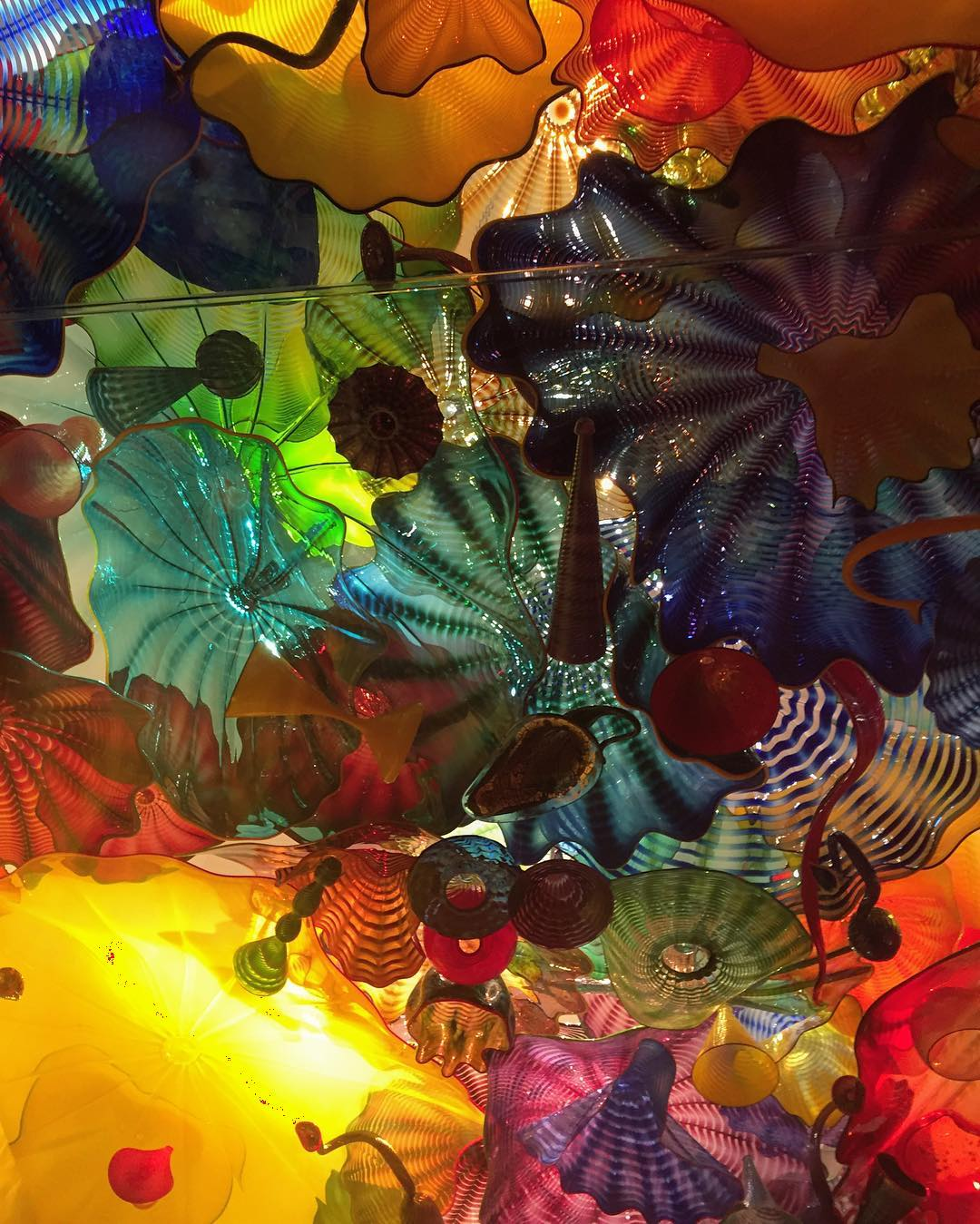 Kaleidoscope #chihuly #playingtourist #Seattle #pnw #pnwlife