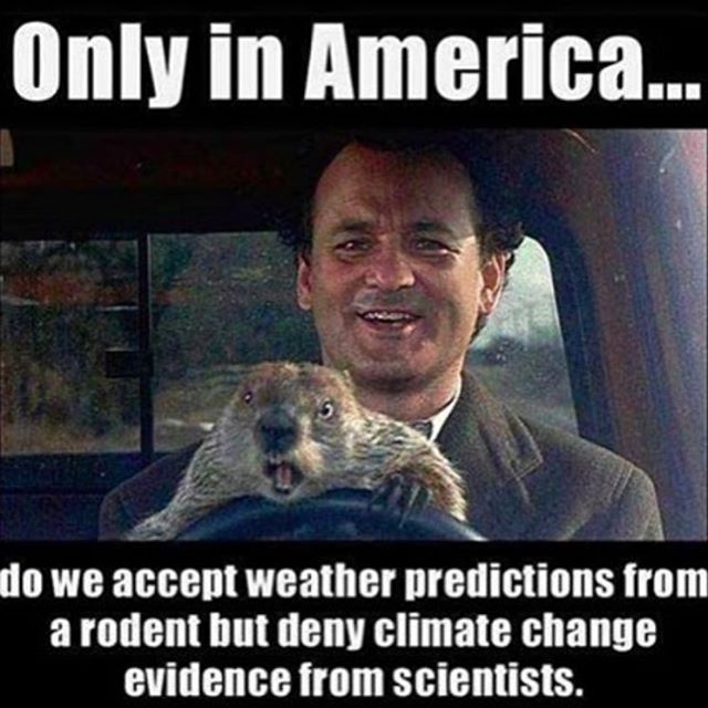 A little fun on #groundhogsday!  Sad but true.  #cuzrockshurt
