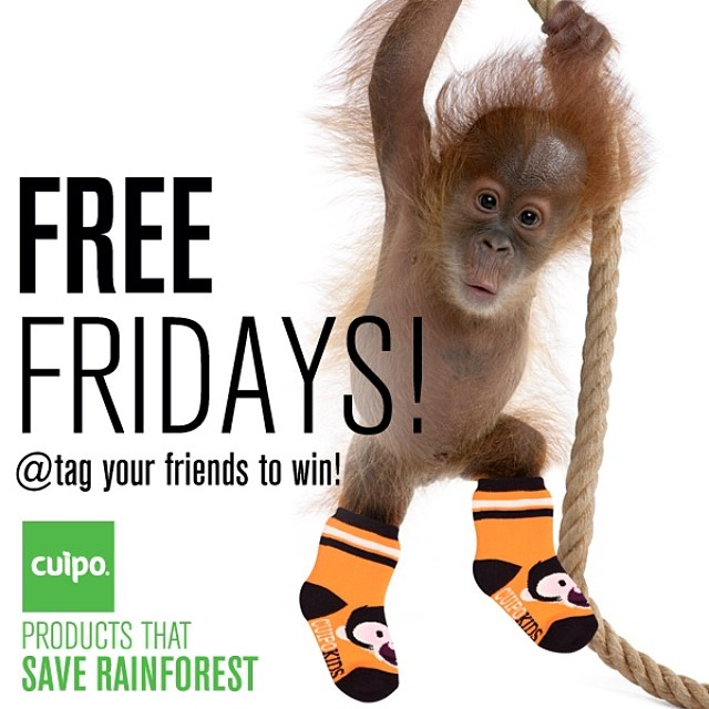FREE FRIDAY!!! Win these orange Sly kid socks. Sizes 2-6 yrs. Just tag your friends and win!! Or go to Cuipo.org to purchase today. #freefriday #cuipo #saverainforest