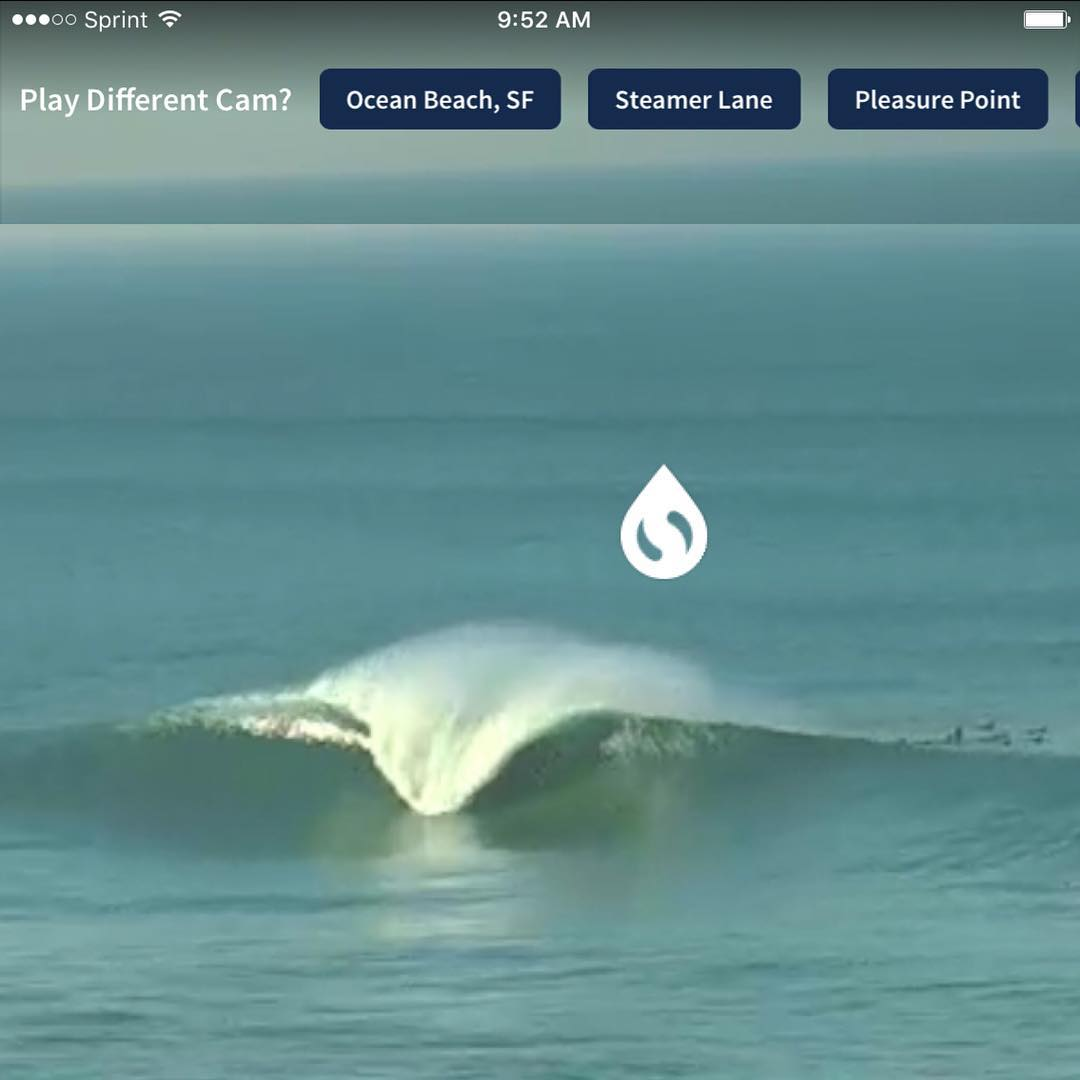 Thanks a lot @surfline ...your #mavericks cam of the beautiful Californian coast just ruined our workday flow
