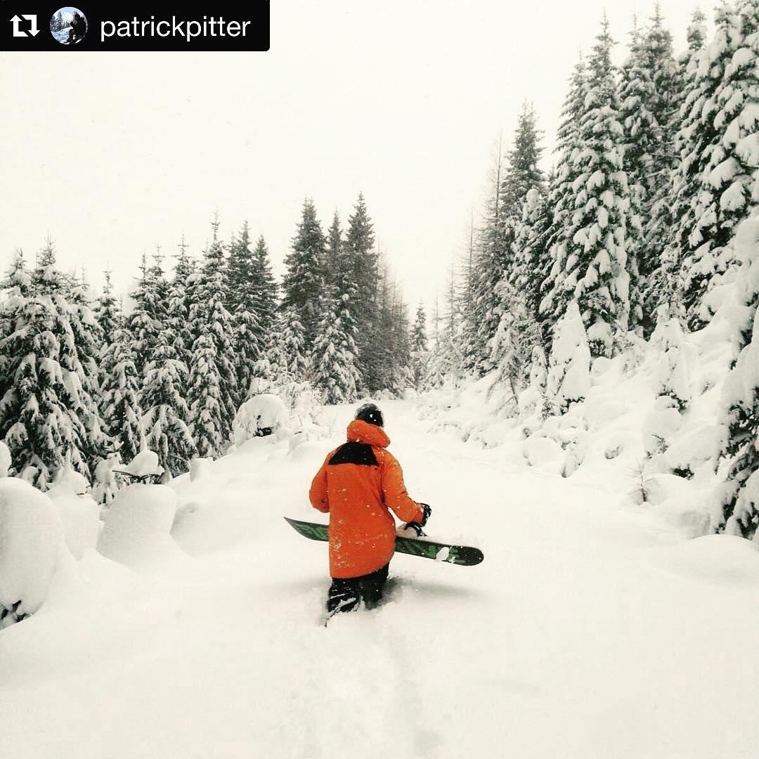 @patrickpitter #winterwonderland #austria #ilovesnow #snowboarding #deeppowder #thrivesnowboards #relentless #explore