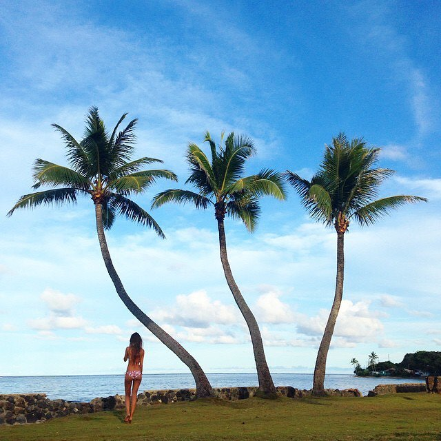 SUNDAY SWAY #repost @ryantfoley #palmtree #beachday #OKIINO