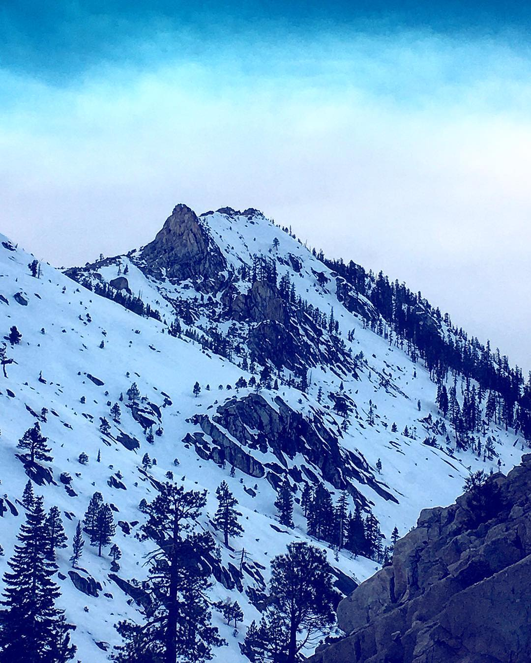 Name this peak. It's in Tahoe, and you can hike it. #mountains #inspiredbynature #drivenbydesign #risedesigns #risedesignstahoe #tahoetribe #sierranevada #winter #tahoesnaps
