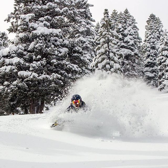 Resort closed? No problem. Power line laps will do when 2 feet drop over night.  Our powder #abyss skis kept @rblums head just above snow today.
