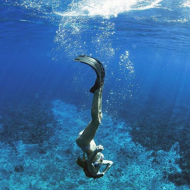Into the deep blue. Such a beautiful shot of @saltkissed in Maui. #snorkel #sail #dive #herefishyfishy