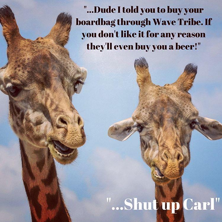 Listen to Carl