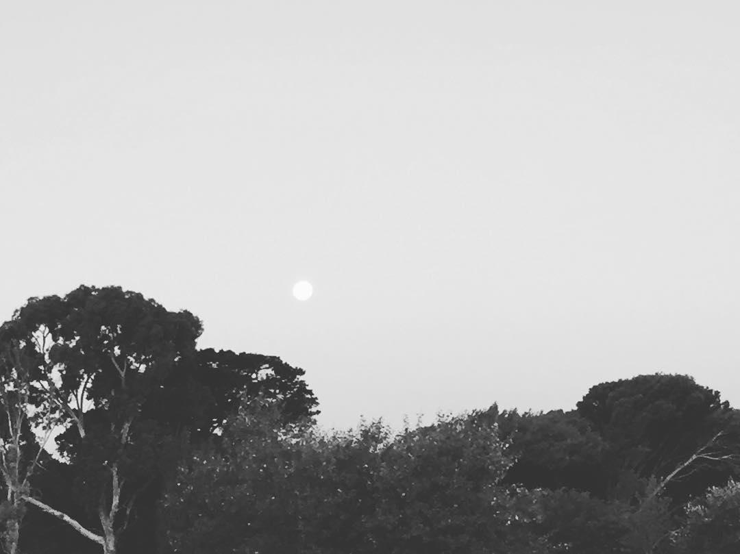 Redomdo faro que te completas saciándonos de brillo. #lunaticos #moon #mardelplata