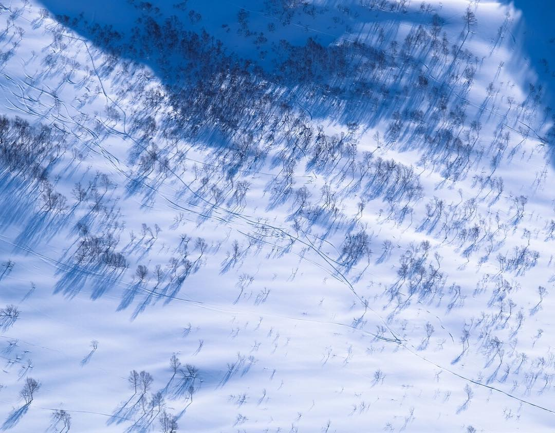 Not from a drone, believe it or not. This is the view of birch tree shadows from Mt. Iwaonupuri while backcountry skiing outside of Niseko, Japan.  Photo by @davidanhalt. #findyourpeak #peakdesign #japan #powder