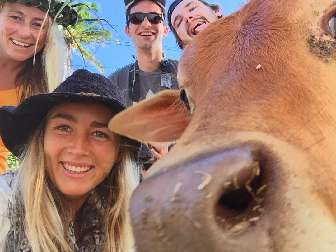 Only in Sri Lanka does a cow #photobomb your group selfie