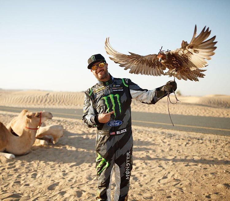 #TBT to that time I befriended a falcon while on the set of #GymkhanaEIGHT. #nbd #majesticbirdismajestic