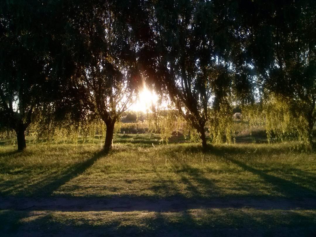 Instantes detenidos en el tiempo. Ni de día, ni de noche, el perfecto momento intermedio. #atardecer #tramonto #sunset #peace #paz #countryside #caeelsol #nuevaatlantis