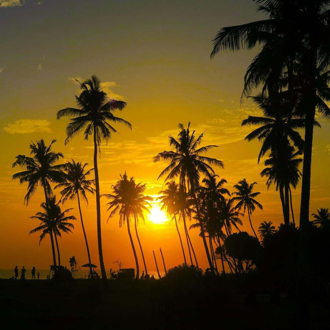 Sri Lankan sunset at Coconut Point surf break. In 2004, Sri Lanka was one of the countries struck by the tsunami from the Indian Ocean earthquake killing an estimated 35,196 people and leaving only the coconut trees standing tall. Never take a second...