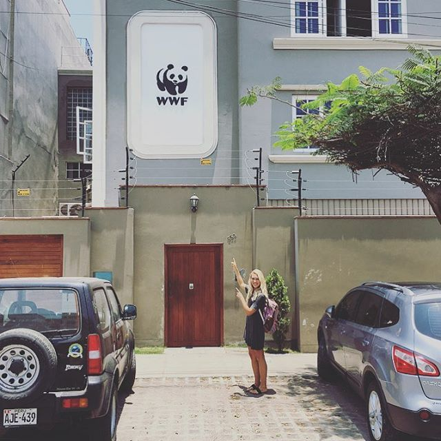 We had a meeting with the Panda People and it was epic! Thank you /// Muchas gracias @wwf Peru for your enthusiasm and positive vibes for #Coast2Coast and @lobitos_cinema_project! /// #planetblue #standupforoceanconservation #lima #peru #buenaso...