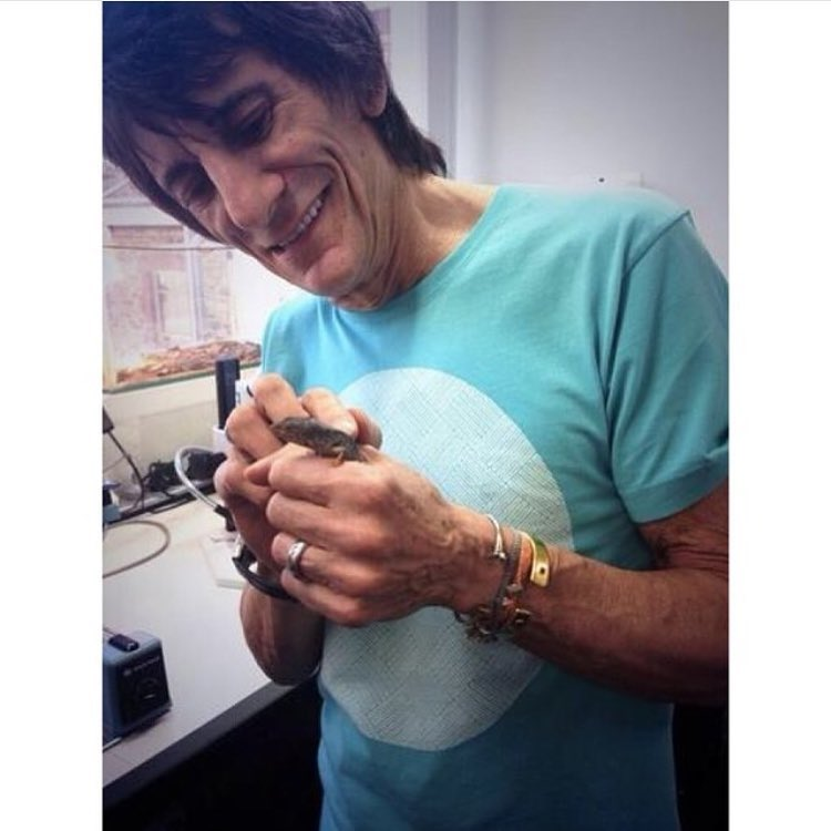 Ronnie likes our tee. photo from @ronniewood insta #awesome #awesomesurfboards #stones