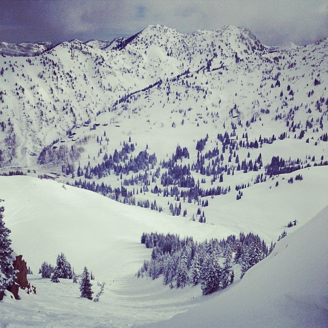 First drop into #gunsight? Alright, I guess so. Beautiful pow day at @altaskiarea