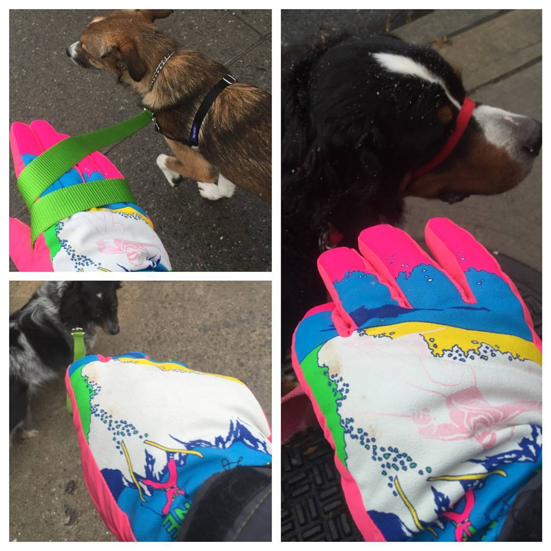 @brownstonedogwalkers might be the best dogwalkers in Brooklyn. And undoubtedly the best dressed.
