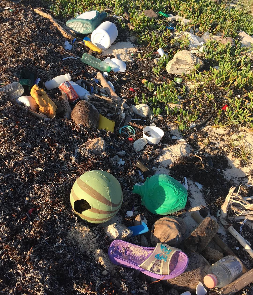 I have to be honest the beaches of the Tulum Biosphere are not as pristine as they look - on either side of our casa where the caretakers stopped raking the trash and seaweed this is what goes on for miles in the Sian Ka'an Nature Reserve - we...