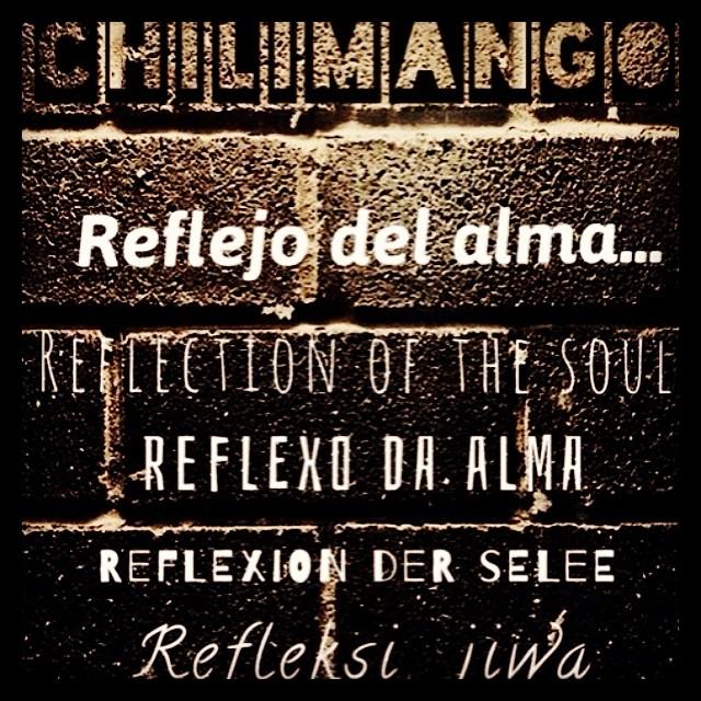 #rookieapp #chilimango #california #brazil #indonesia #srgentina #espańa #portugal #eeuu