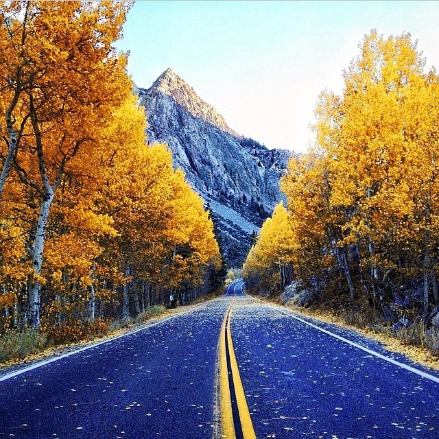 If you were road trippin' with friends, and this was your view, would you ever come back? We wouldn't. Unbelievable fall photo from @ravenreviews! #firewaterfriends #fall #mountains