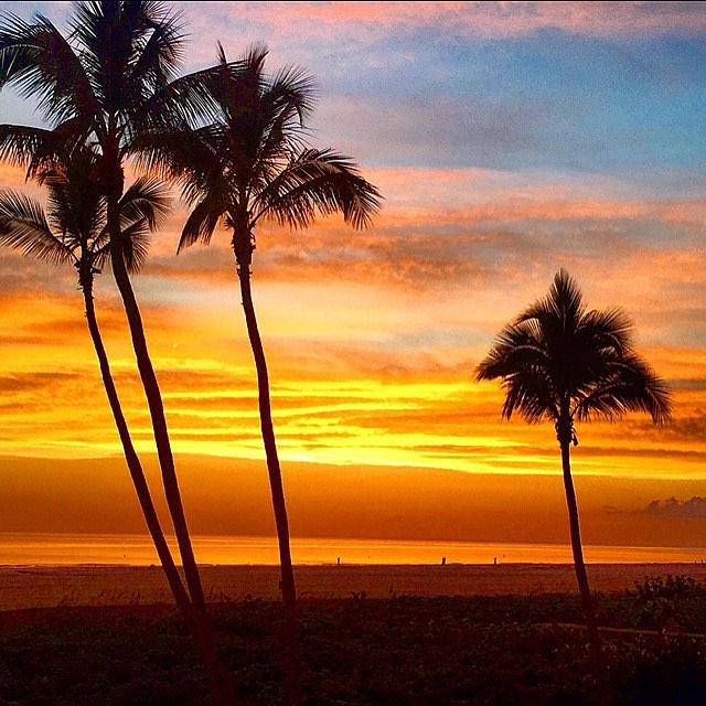 Saturday Sunsets